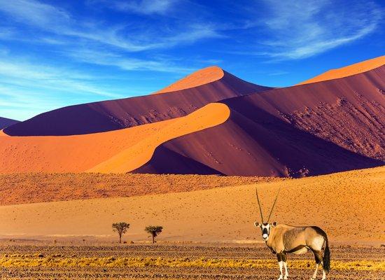 Gibt es immer mehr Wüsten?