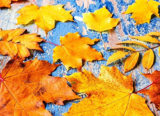 Poesie zum Anhören: Herbstzeit